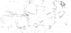 Gold Cost Strength & Conditioning Logo